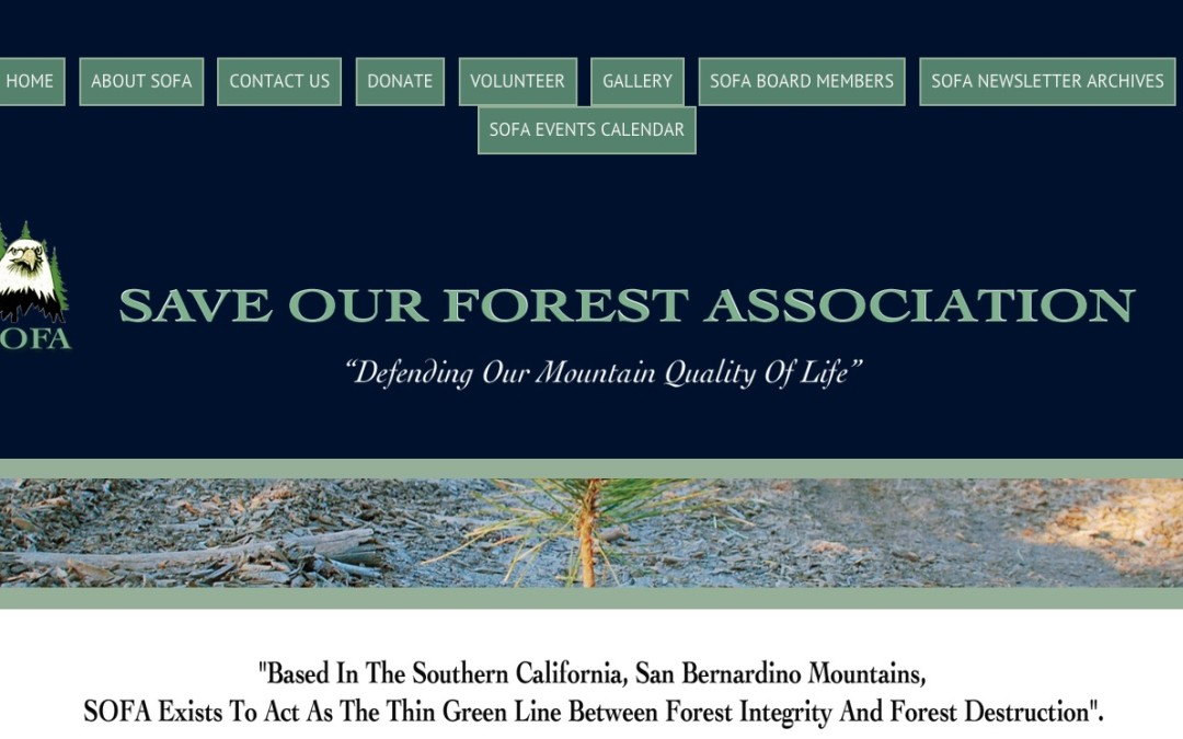 Save Our Forest Association
